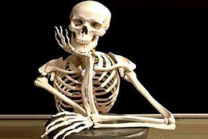 скелет сидит за столом