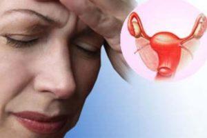 женщина и ее репродуктивные органы