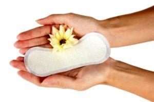 прокладка и цветок в руках