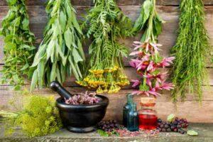 лекарственные травы сушатся на веревке