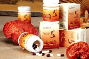 упаковки препаратов и гриб линчжи