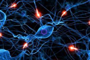 картинка нервные импульсы