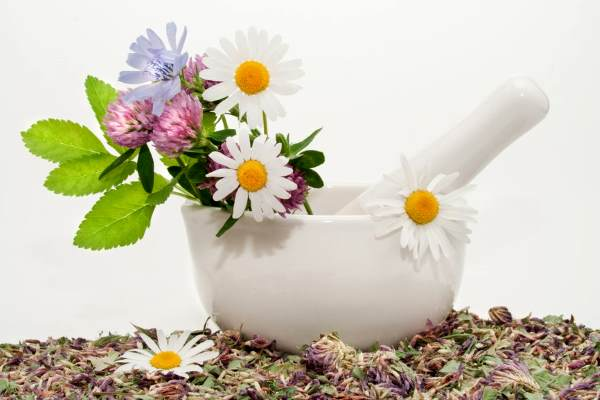 Какие гомеопатические препараты применять при климаксе