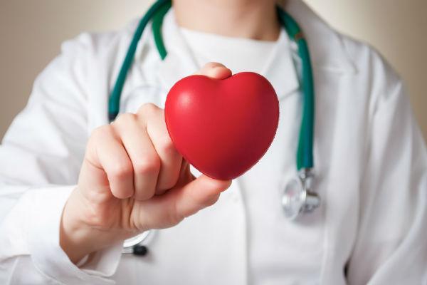 здоровая кровеносная система