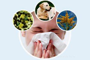 девушка сморкается от аллергенов